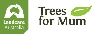trees for mum banner
