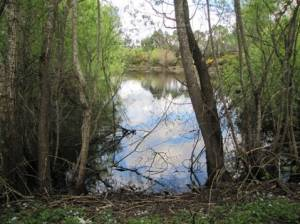Lake Earnshaw
