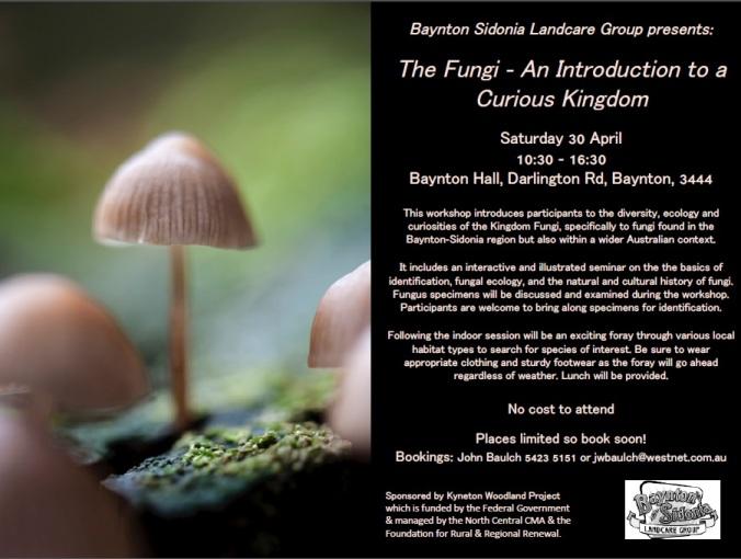 baynton sidonia fungi