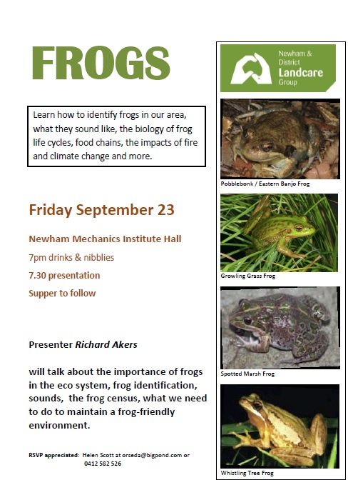 frogs-poster