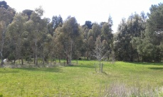 The enviro fund site today.