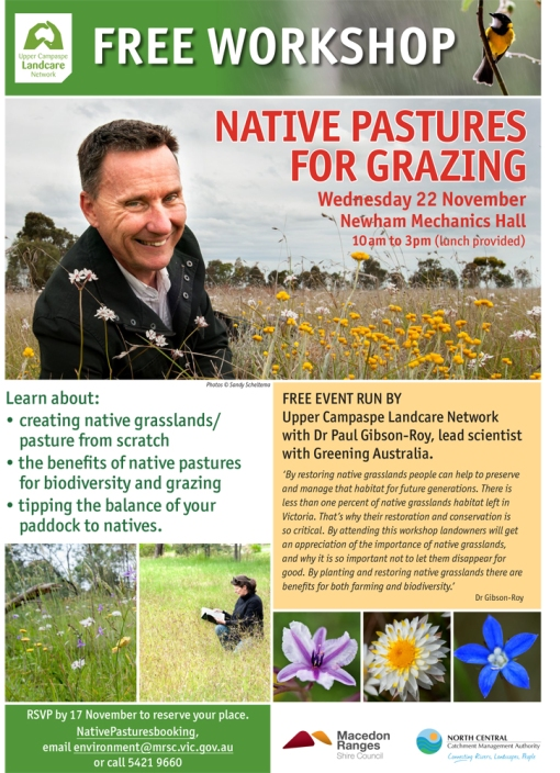 LATEST UCLN A4 Native pastures for grazing_WEB-3