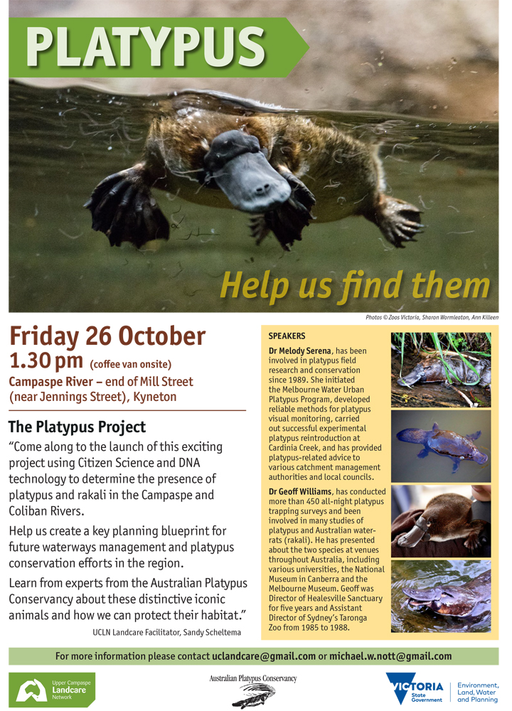 UCLN A4 Platypus poster_EMAIL