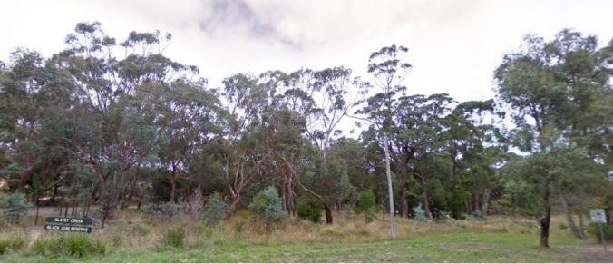 slatey-creek-reserve