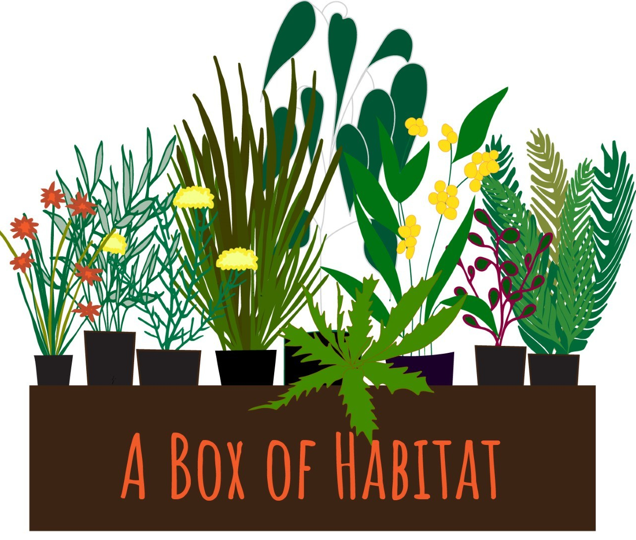 a box of habitat